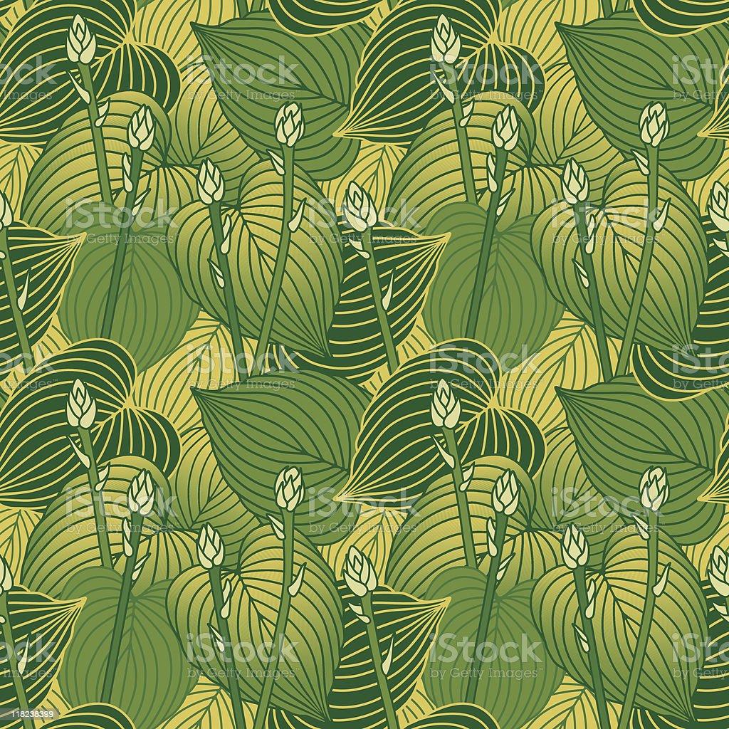 Budding Hosta Pattern royalty-free stock vector art