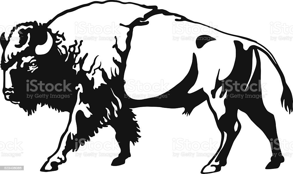 Buffalo - American Bison vector art illustration