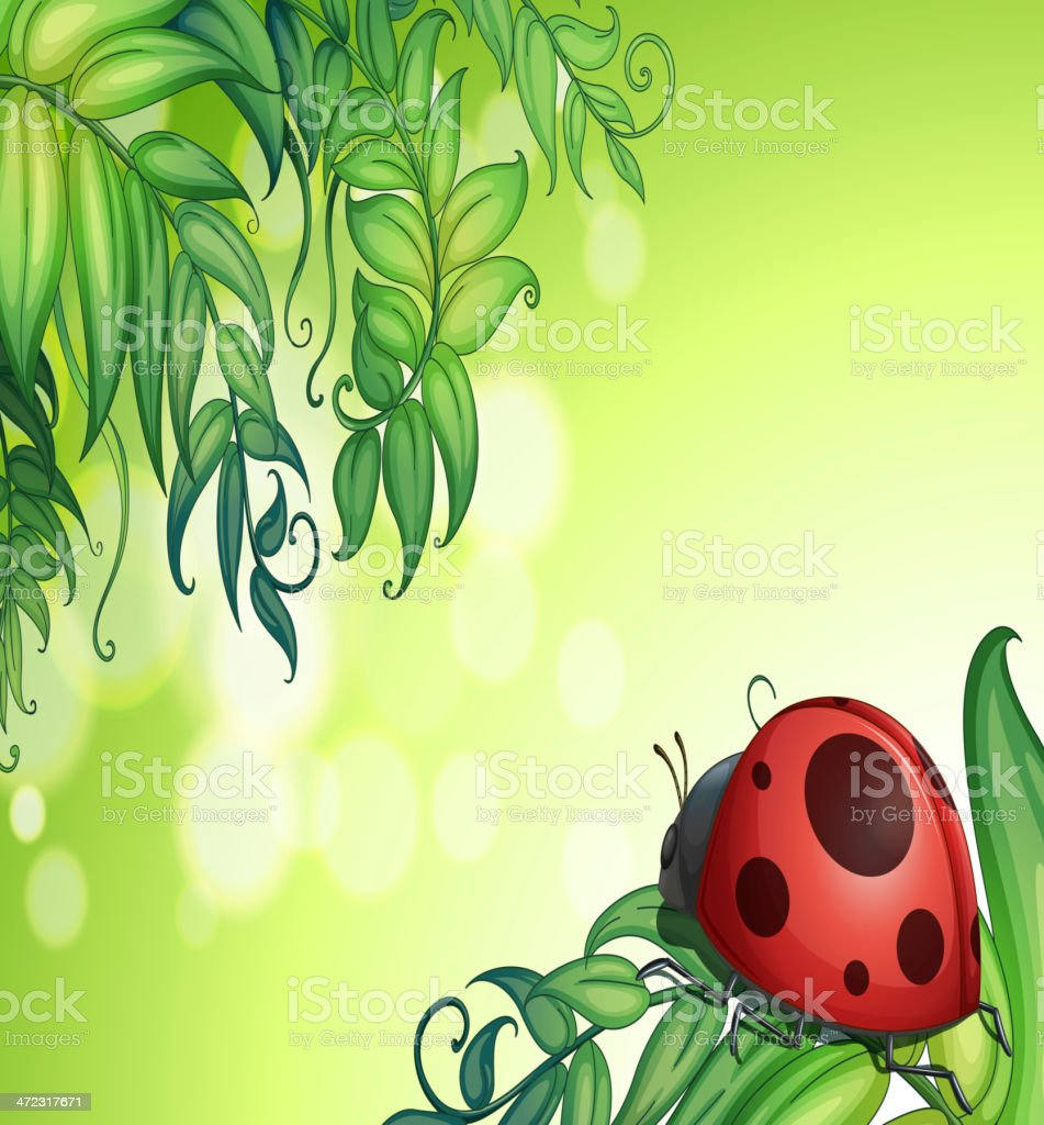Bug above the green leaves royalty-free stock vector art