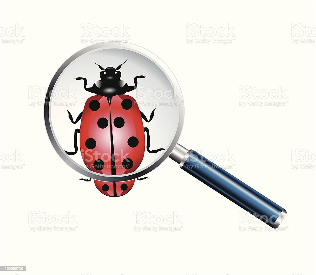 Bug and magnifying glass lens - VECTOR royalty-free stock vector art