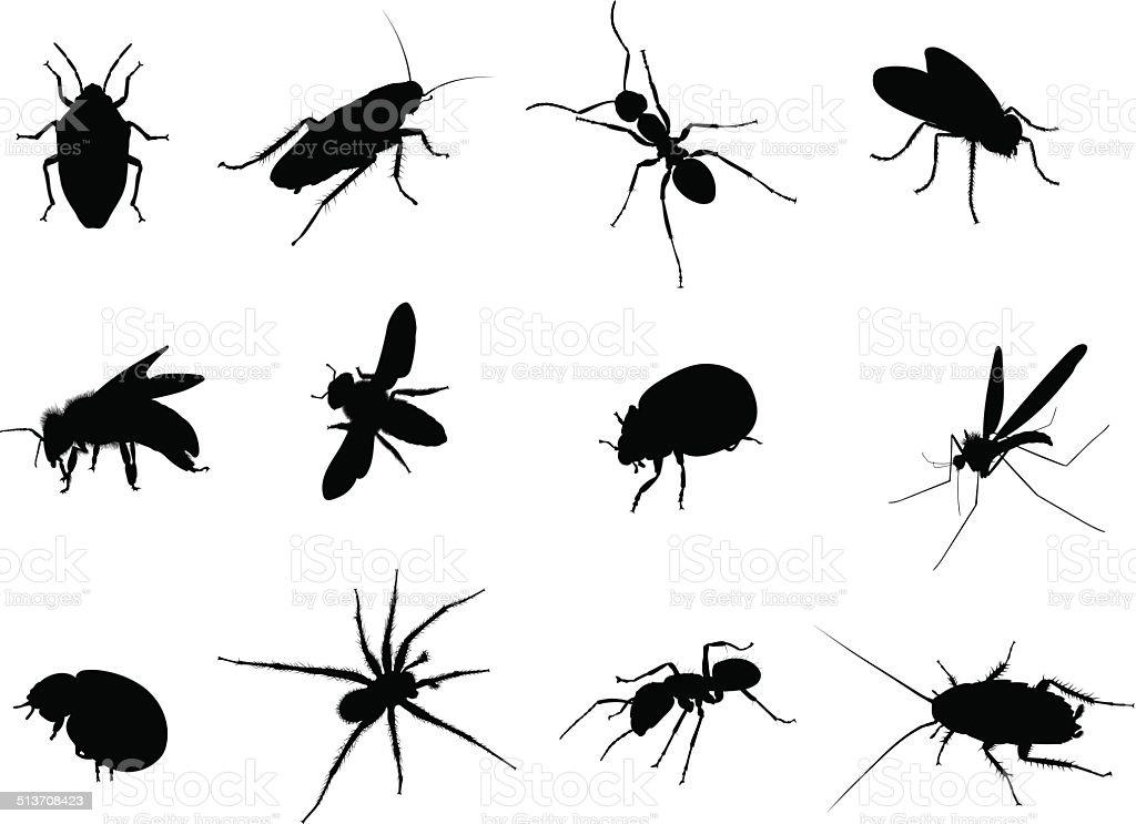 Bug Black Vector Silhouettes Illustration vector art illustration