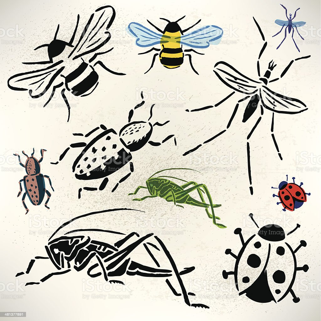 Bugs - Grasshopper, Beetle, Lady Bug, Bumble Bee, Mosquito royalty-free stock vector art