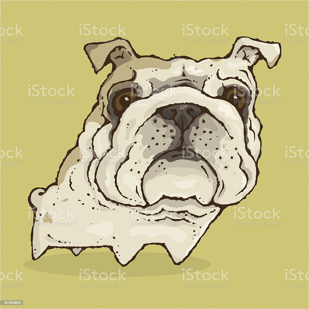 Bulldog royalty-free stock vector art