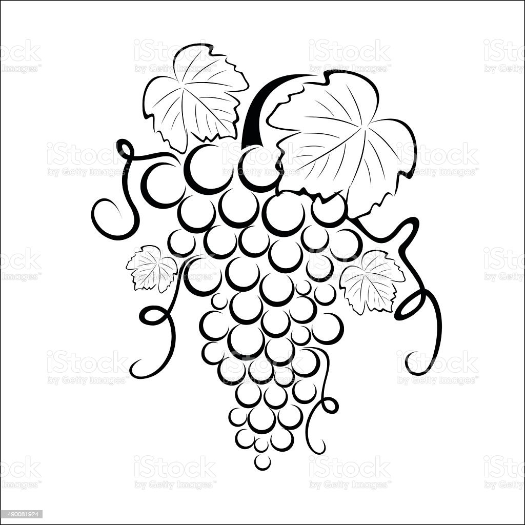 Bunch of grapes royalty-free stock vector art
