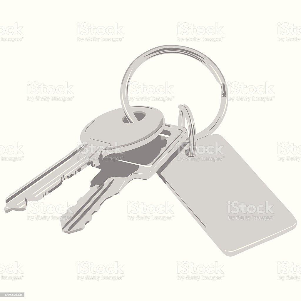 Bunch of keys. Vector. vector art illustration