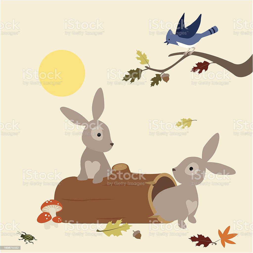 Bunnies Wake Up vector art illustration