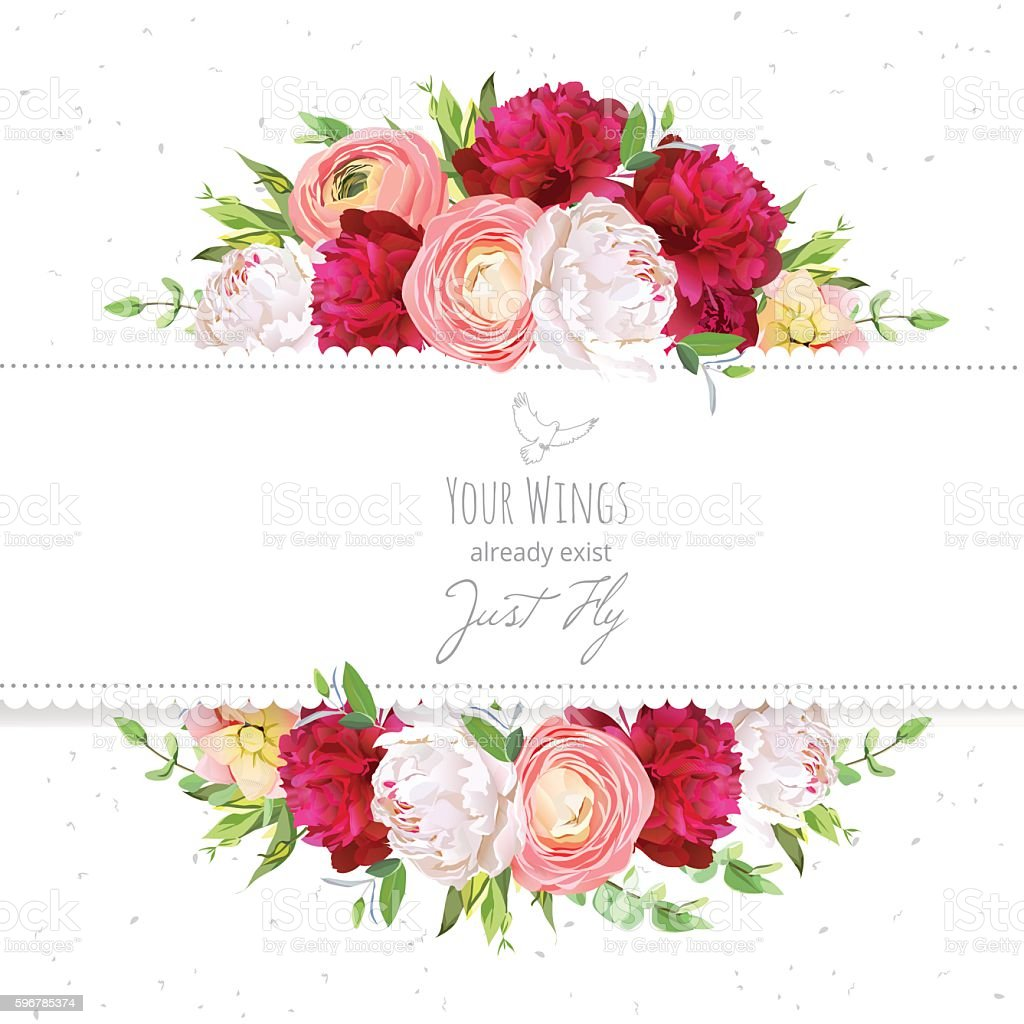 Burgundy red and white peonies, ranunculus, rose vector design frame. vector art illustration