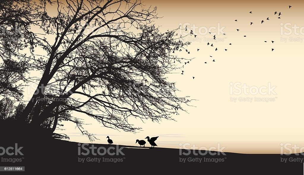 Burned Paper Duck Silhouettes vector art illustration
