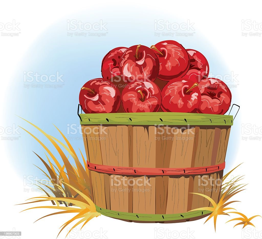 Bushel of Apples vector art illustration