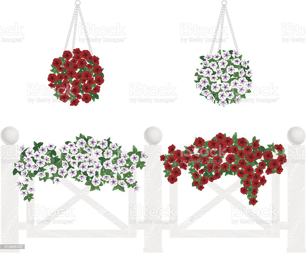 Bushes and flowers in pots and hanging on the fence. vector art illustration