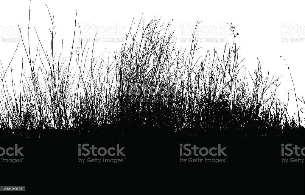 Bushes Silhouette vector art illustration