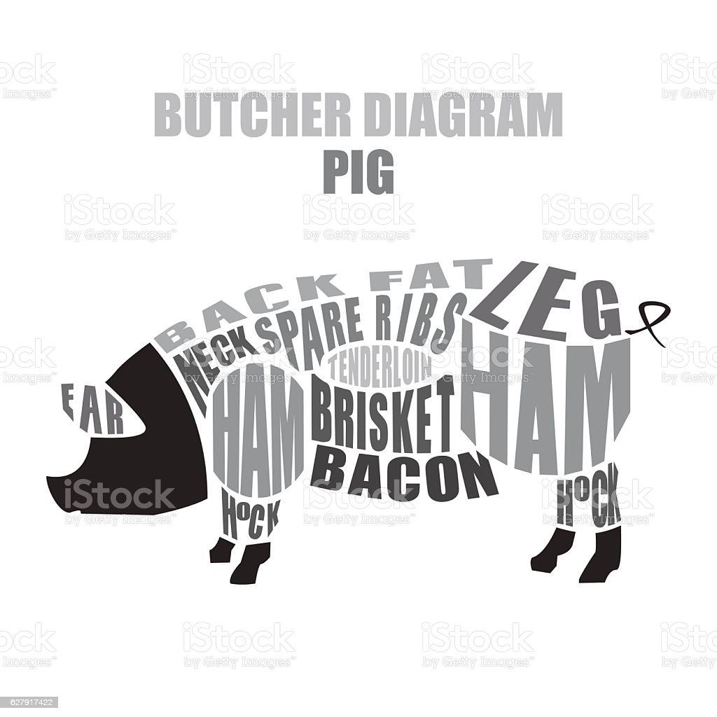 Butcher diagram of pork. Pig cuts vector art illustration