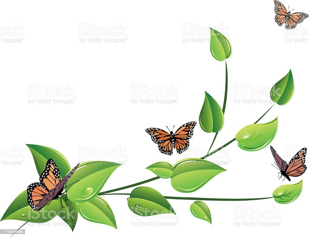 Butterflies and Leaves royalty-free stock vector art