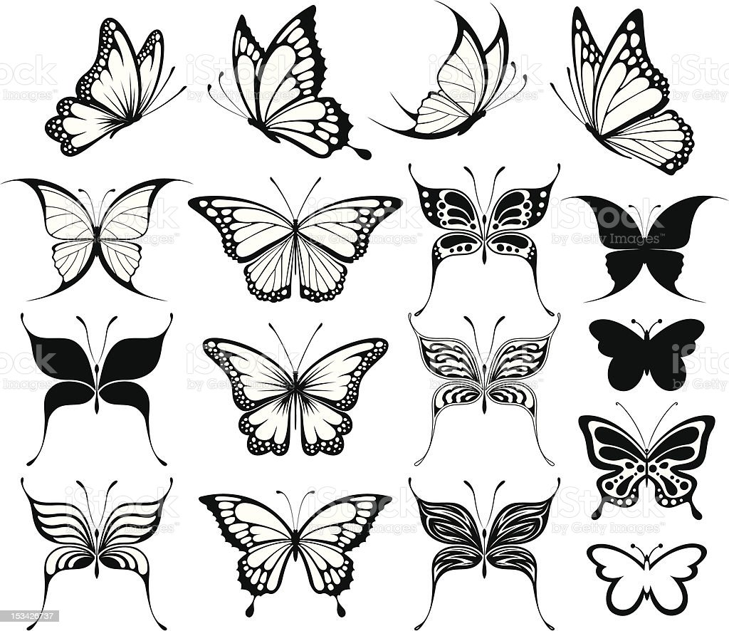 butterflies silhouettes vector art illustration