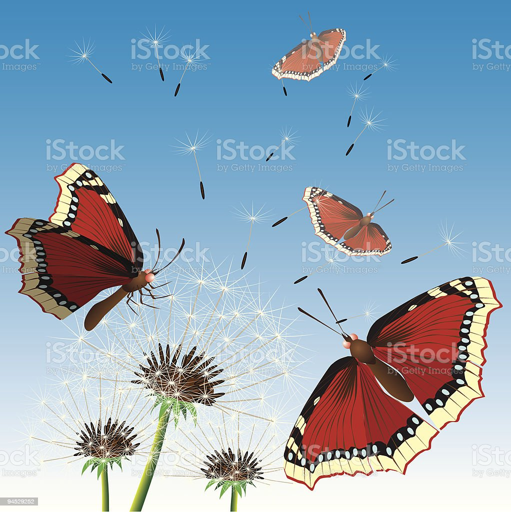 Butterflies sittings on dandelions. Vectorial illustration. royalty-free stock vector art