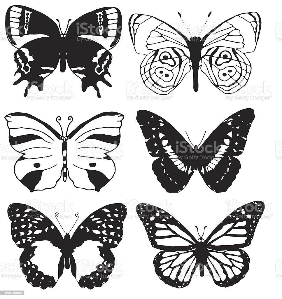 butterflies vector royalty-free stock vector art