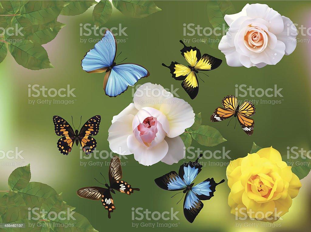 Butterfly Garden-Vector Illustration vector art illustration