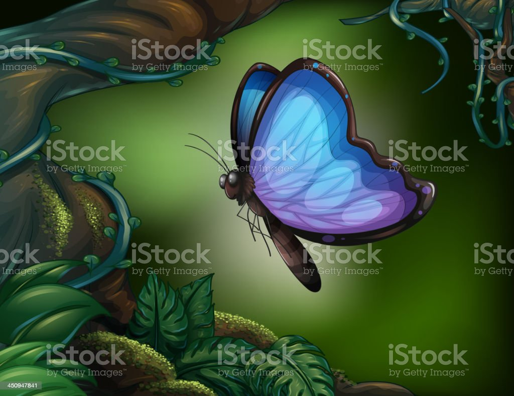 butterfly in the rainforest royalty-free stock vector art