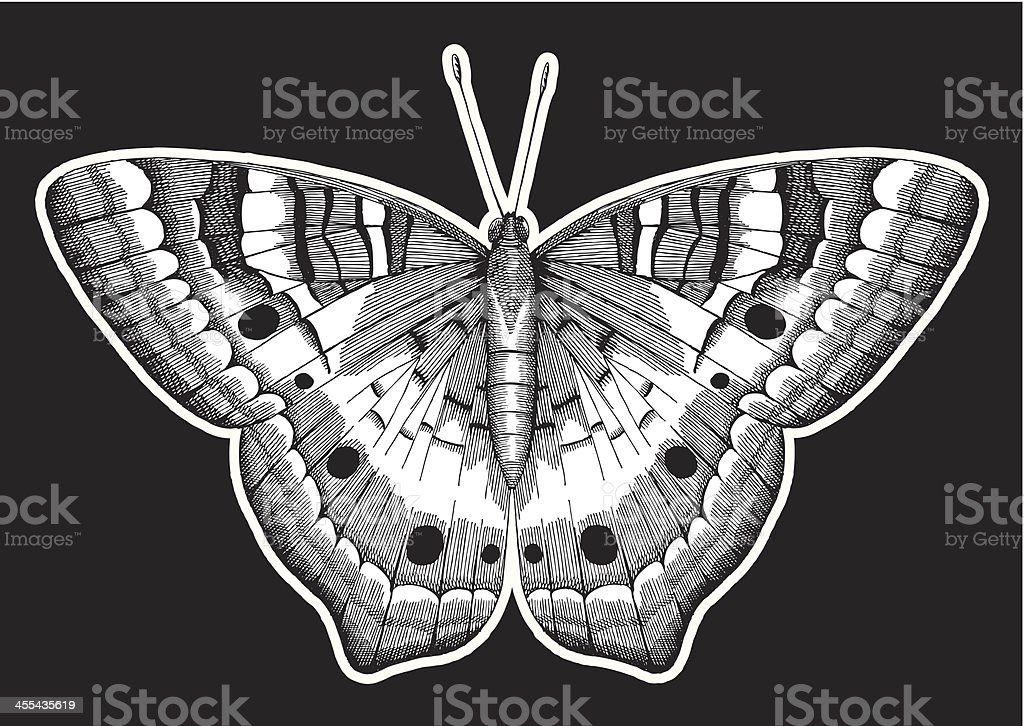Butterfly Ink Drawing royalty-free stock vector art