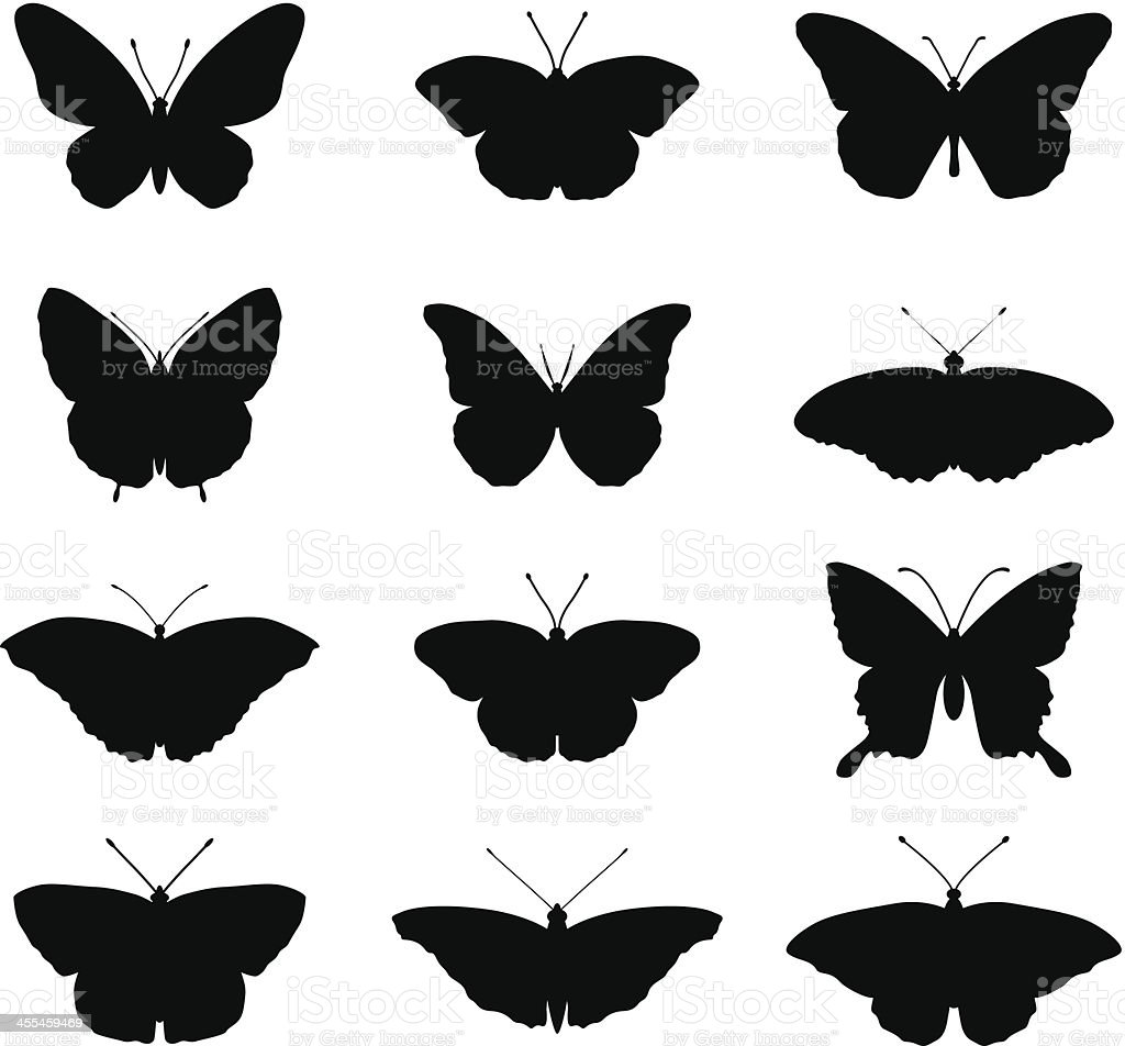 Butterfly Silhouettes vector art illustration