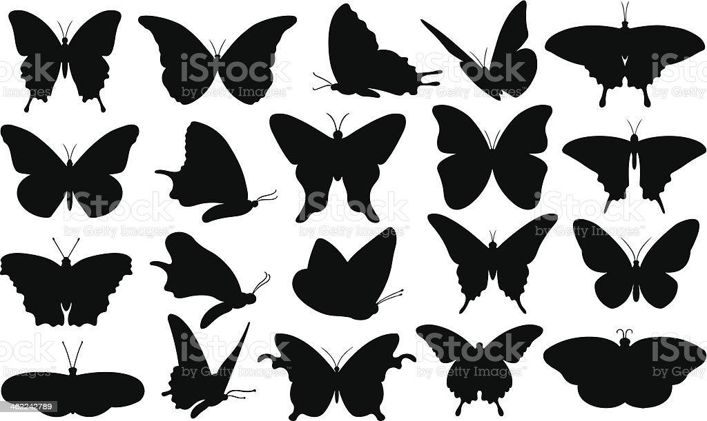 butterfly vector art illustration