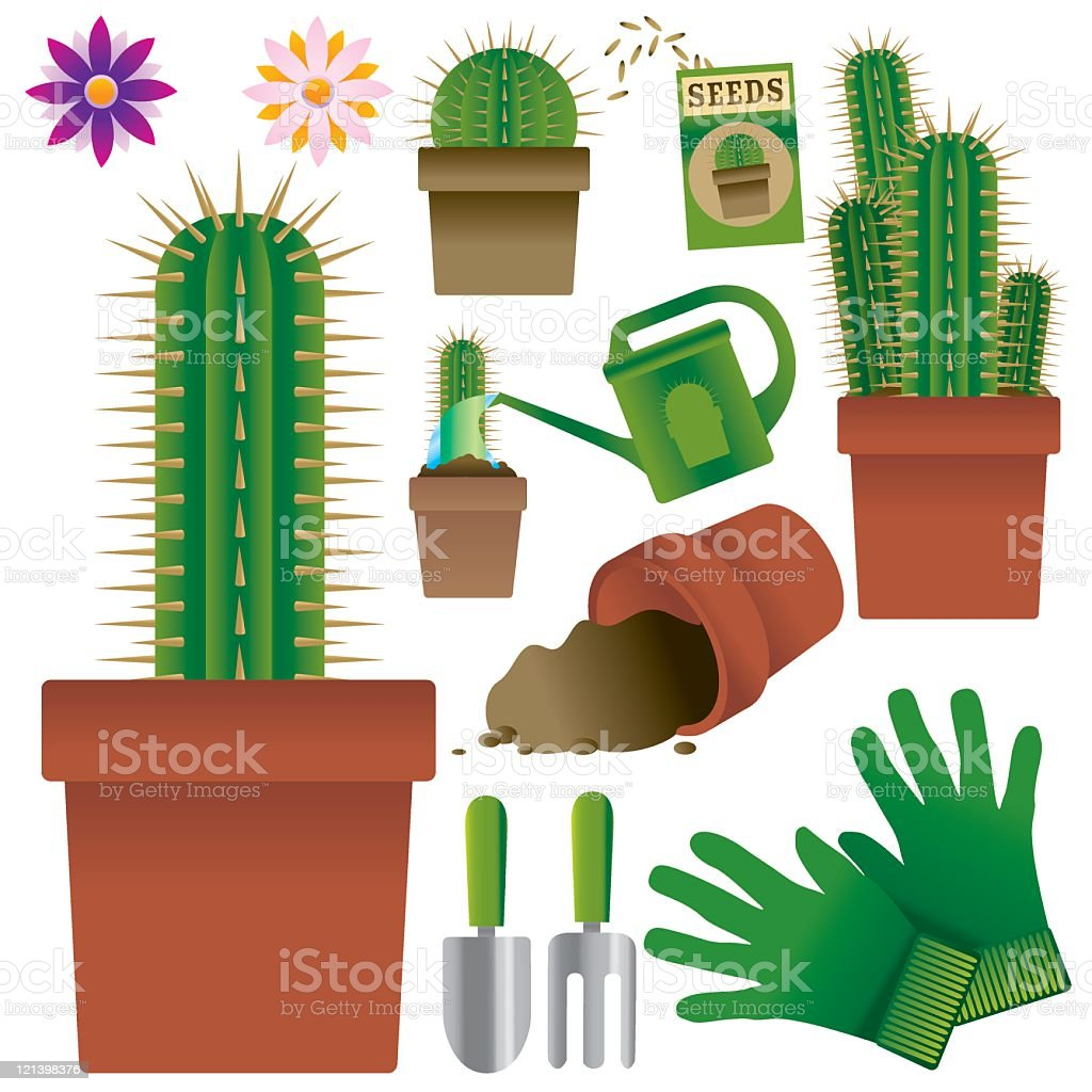 Cacti royalty-free stock vector art