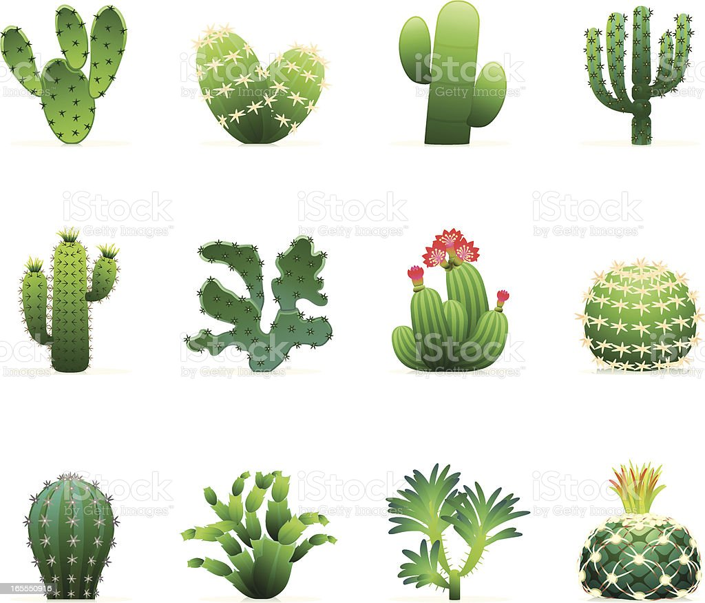 Cactus Icon Set royalty-free stock vector art