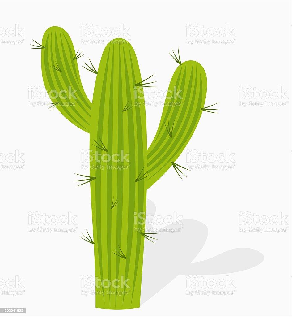 Cactus illustration vector art illustration