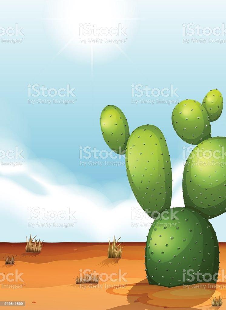Cactus plant in the desert vector art illustration