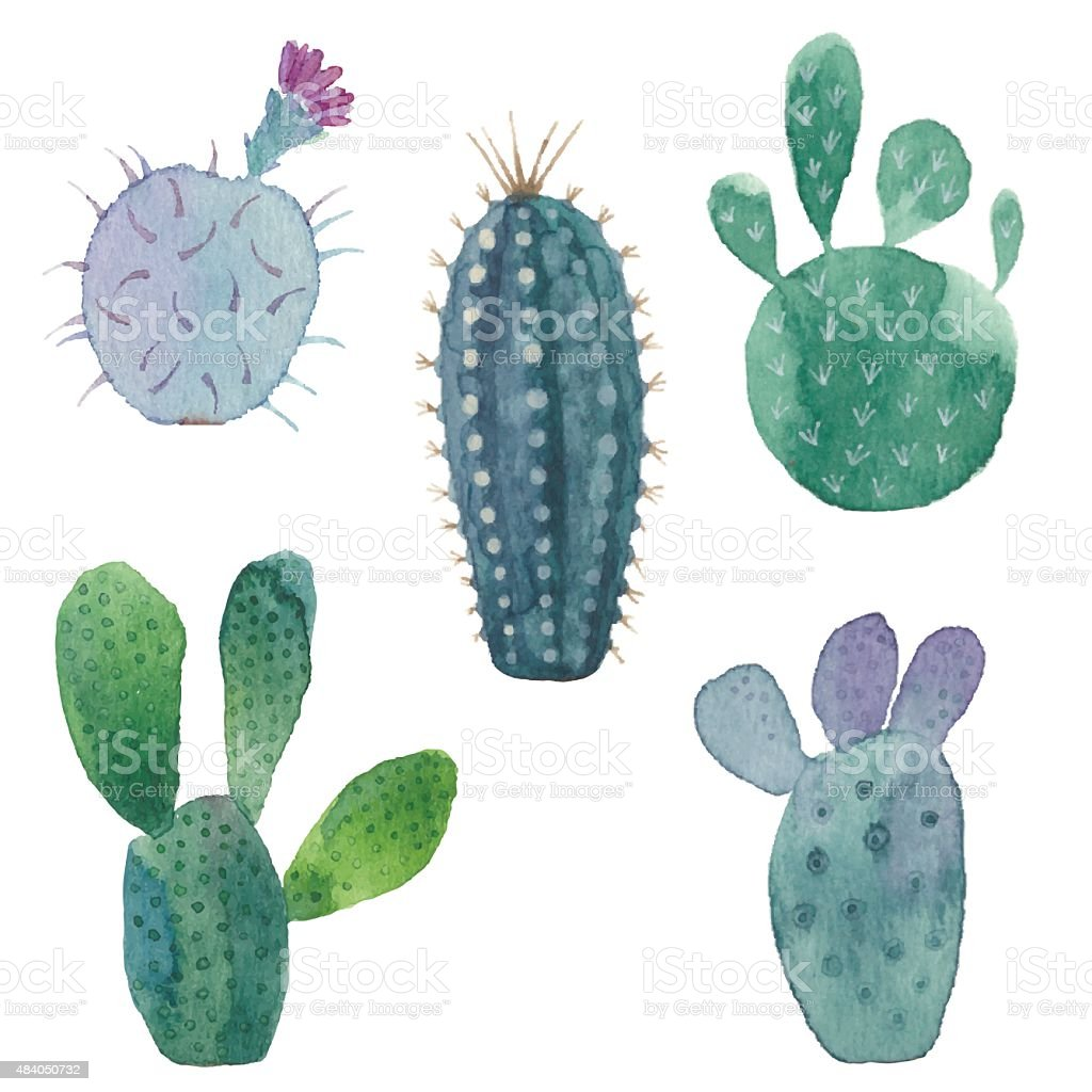 Cactus seamless pattern on white background. vector art illustration