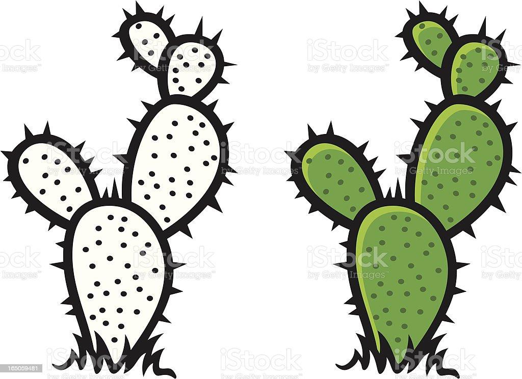 cactus vector art illustration