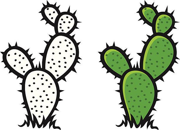 Cactus Clip Art, Vector Images & Illustrations - iStock