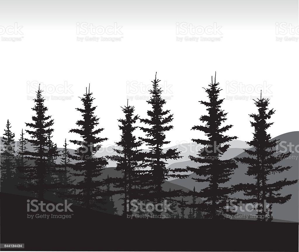 Calgary Pines vector art illustration