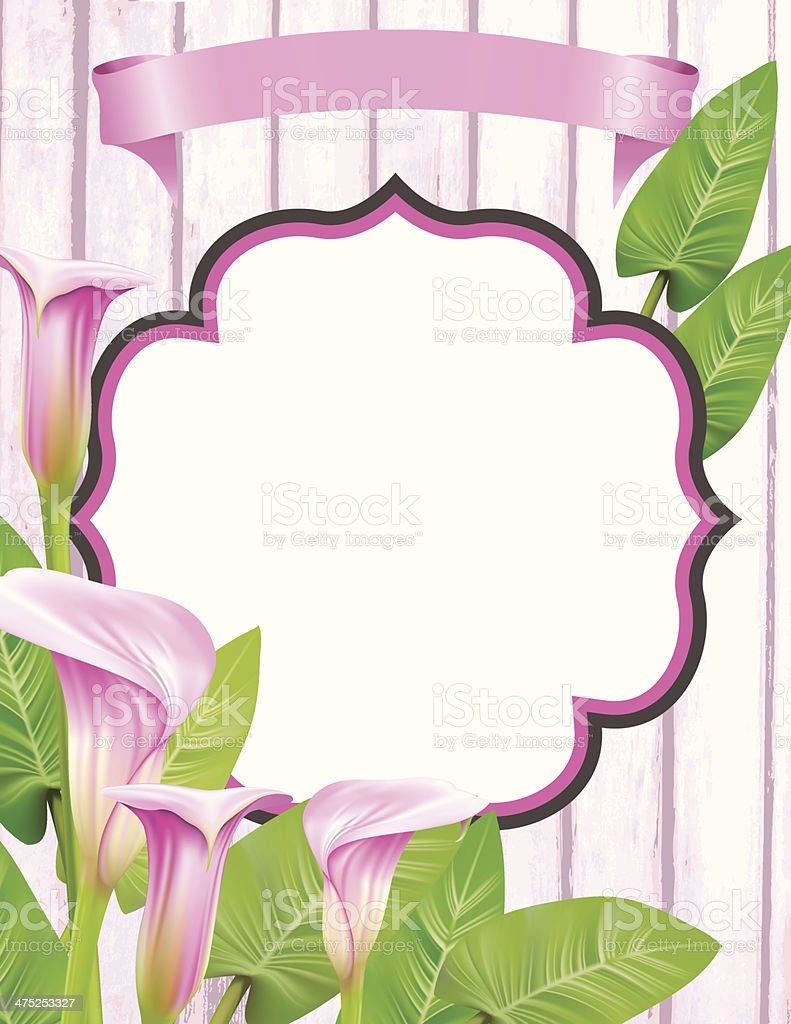 Calla Lily frame vector art illustration