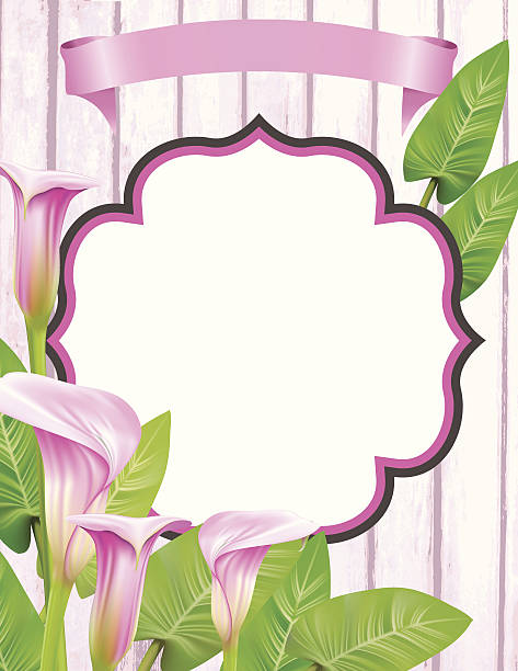 Calla Lily Border Clip Art 94422 Interiordesignb