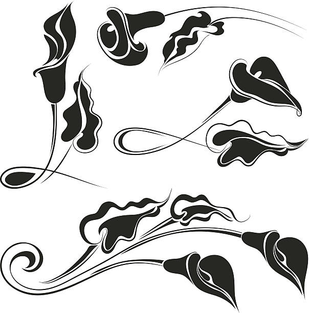 Calla Lily Clip Art, Vector Images & Illustrations - iStock