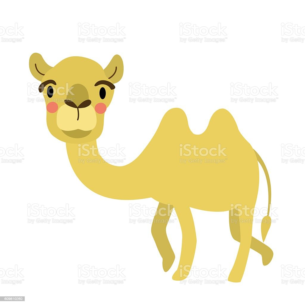 Camel animal cartoon character vector illustration. vector art illustration