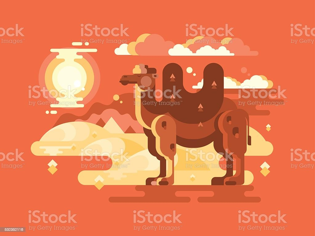 Camel in desert flat vector art illustration