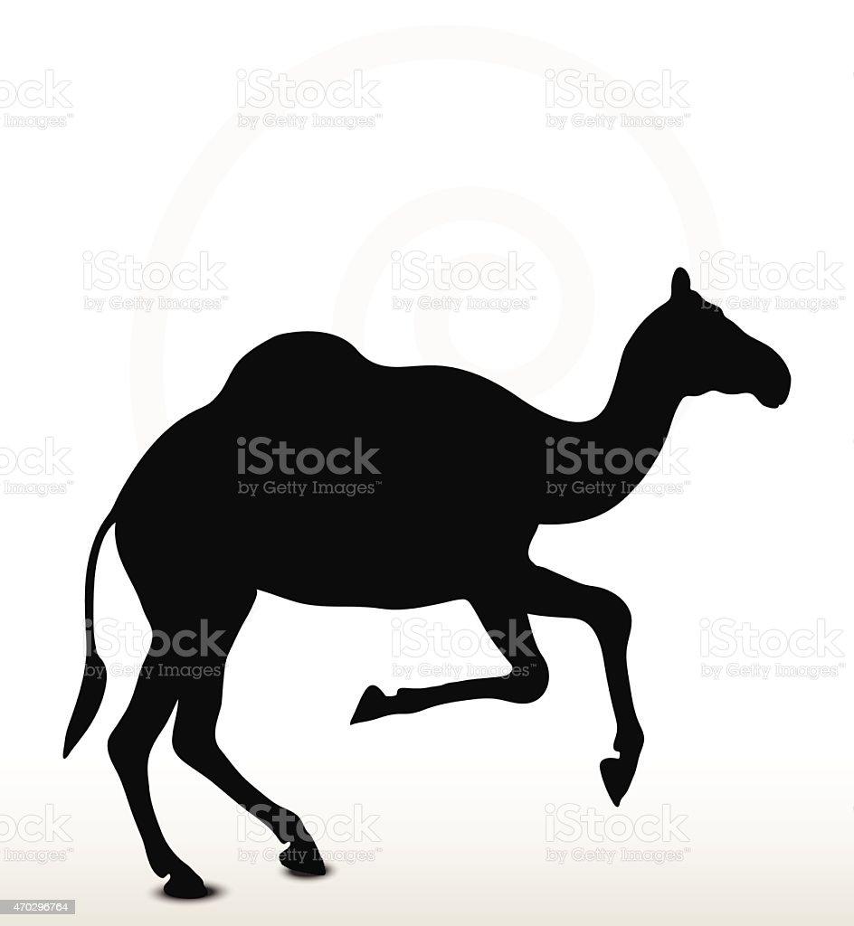 camel in Running pose vector art illustration