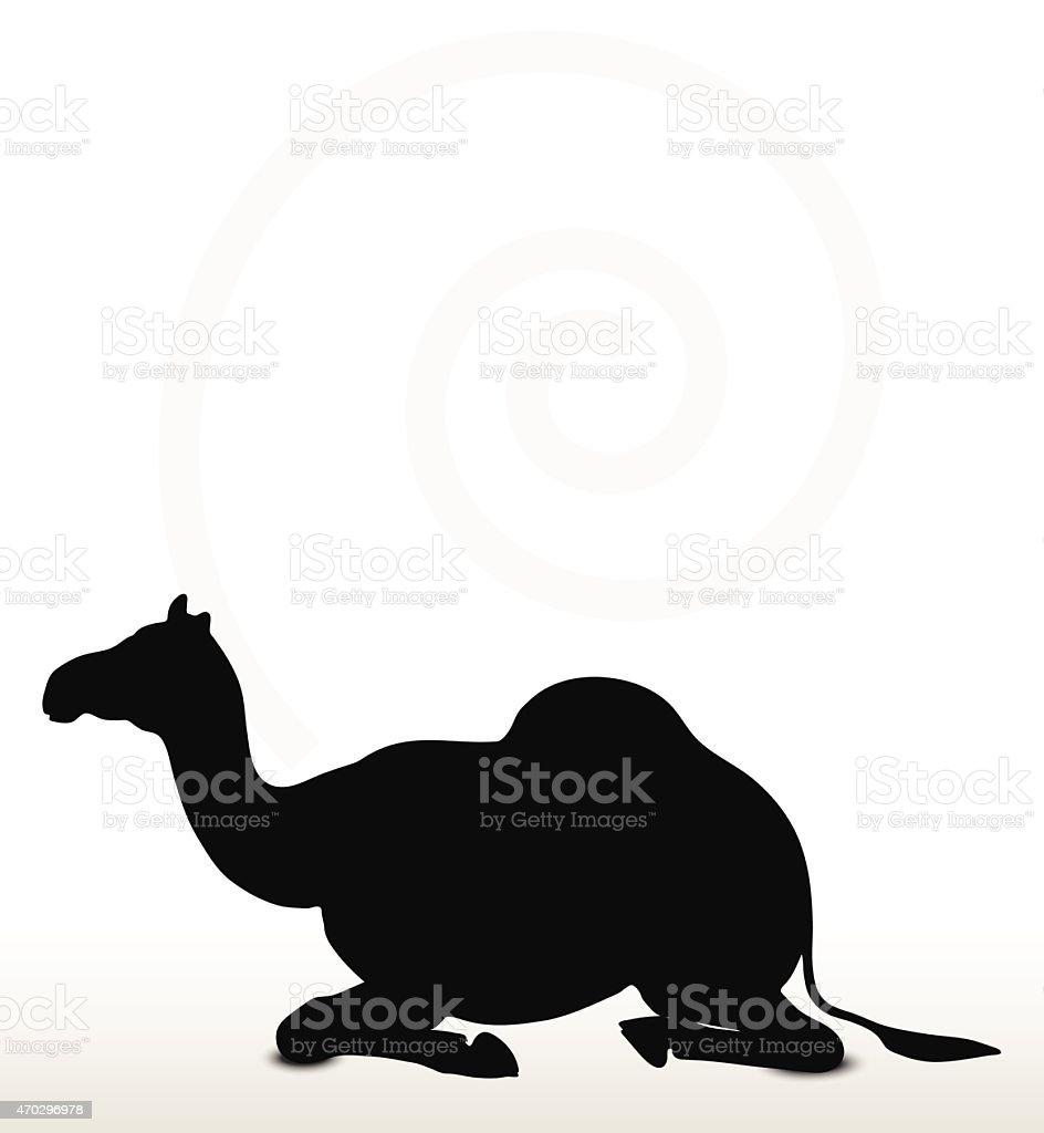 camel in Sitting pose vector art illustration