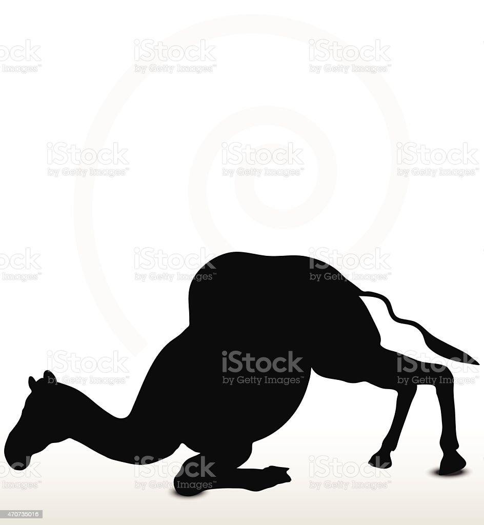 camel in Unloading pose vector art illustration