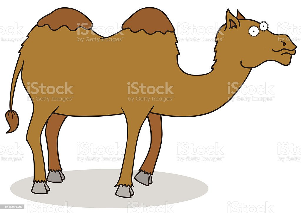 camel royalty-free stock vector art