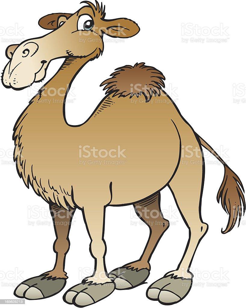 Camel royalty-free stock vector art
