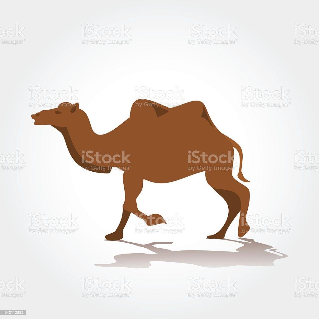 camel  vector illustration vector art illustration
