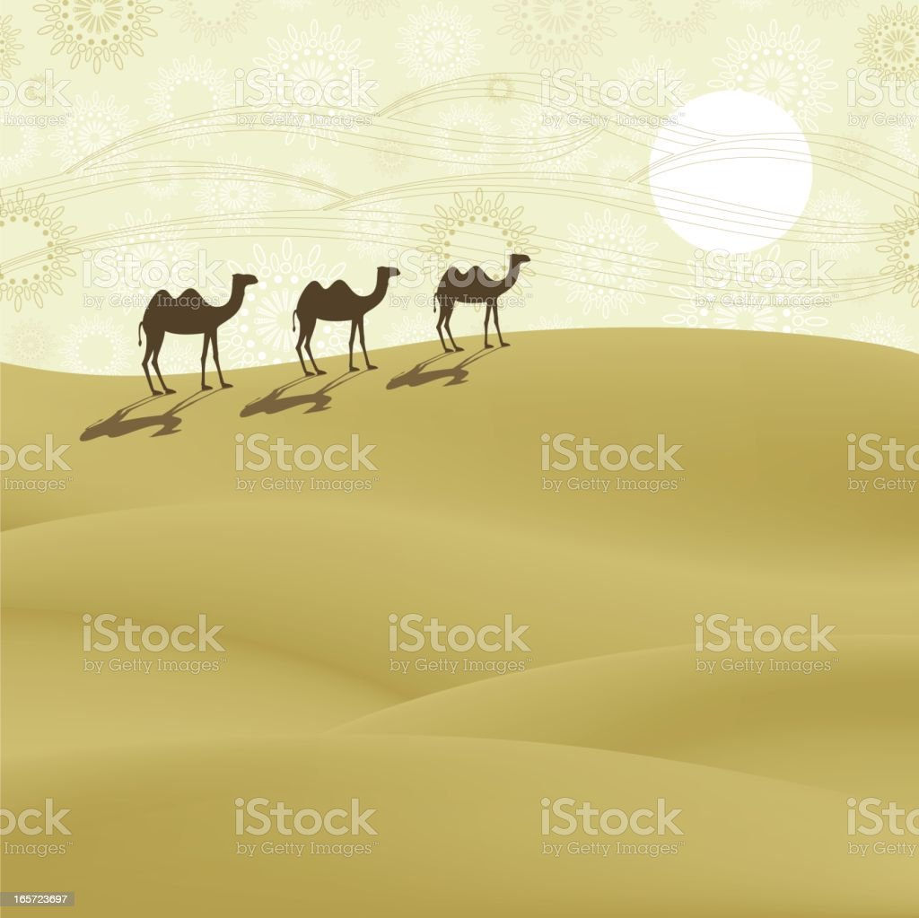 Camels on the desert royalty-free stock vector art