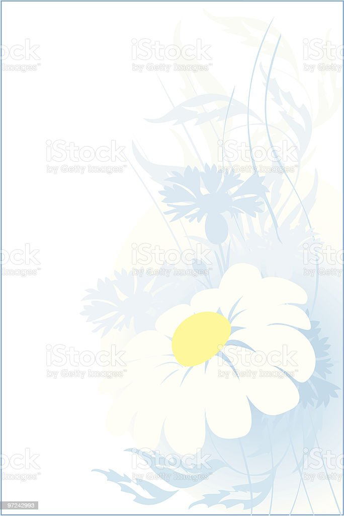 camomile. floral abstract  background for you design royalty-free stock vector art
