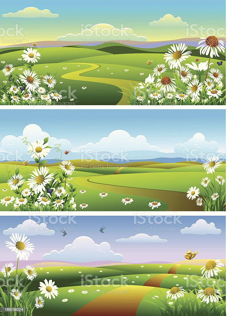 camomile landscape.. royalty-free stock vector art