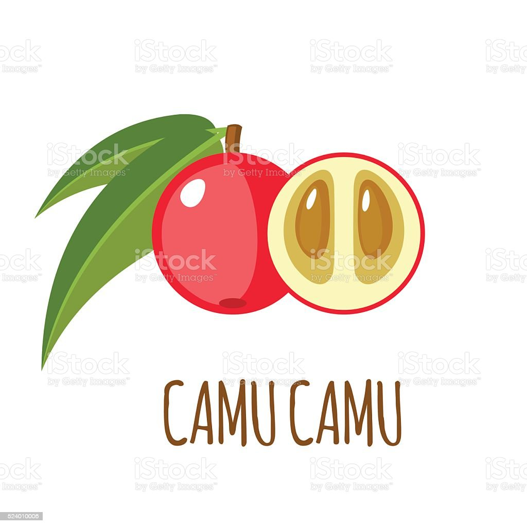 Camu camu icon in flat style on white background vector art illustration