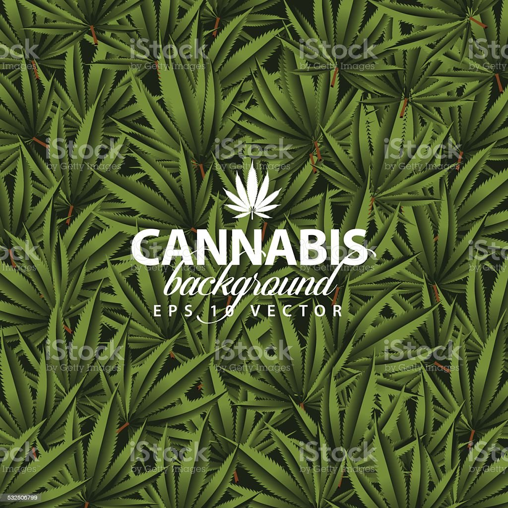 Cannabis background vector art illustration