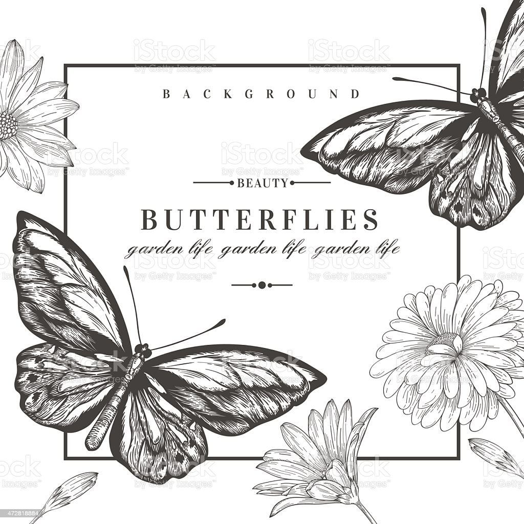 Card with butterflies and flowers. vector art illustration